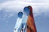Close-up shot of skis — Stock Photo