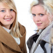 Stock Photo: Two blonde women with shelter
