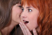 Closeup of female duo sharing secrets — Stock Photo
