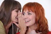 Kvinnor skvallra — Stockfoto
