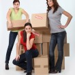 Three woman stood by pile of boxes — Stock Photo