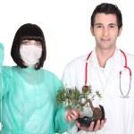 Medical team attaching a drip to a bonsai tree — Stock Photo #16487263