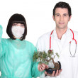Stock Photo: Medical team attaching drip to bonsai tree