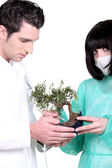 Doctors holding small tree — Stock Photo
