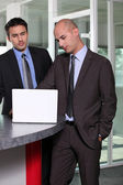 Two businessmen working on common project — Stock Photo