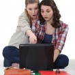 Two female student on a computer. — Stock Photo #16786433