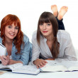 Young women studying books — Stock Photo #16787367