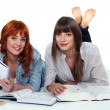 Young women studying books — Stock Photo