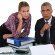 Stock Photo: Businessmworking with his assistant