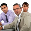Executive Team — Stock Photo #16805017