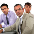 Stock Photo: Executive Team