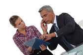 Assistant showing document to boss — Stock Photo
