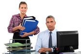 Secretary bringing folders to her boss — Stockfoto