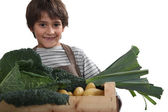 Young boy with a box full of fresh produce — Stock Photo