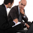 Two businessmen discussing project — Stock Photo