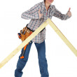 Female carpenter giving the thumbs-up — Stock Photo #17353259