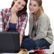 Two female students revising together — Stock Photo