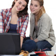 Stock Photo: Two female students revising together