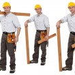 Shots of carpenter — Stock Photo #17621897