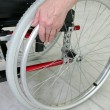Disabled person in a wheelchair - Stock Photo