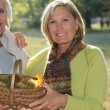 Stock Photo: Two elderly females gathering chestnuts