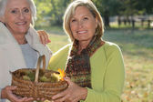 Two elderly females gathering chestnuts — Stock Photo