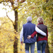 Mature couple walking through woods — Stock Photo #18423951