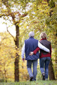 Mature couple walking through the woods — Stock Photo