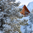 Chalet in the snow — Foto Stock
