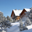 Mountain chalet — Stock Photo #18434649