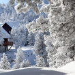 Snowy cabins — Stock Photo