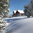 Snowy chalet — Stock Photo #18435041