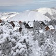 Mountain chalets - 