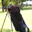 Golf bag replete with clubs — Stock Photo #18438421