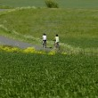 Cycling through the countryside — Stock Photo