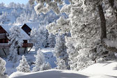 Snowy cabins — Stock Photo