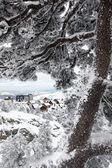 Snow covered village — Stock Photo