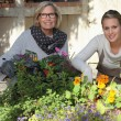 Mother and daughter gardening together — ストック写真