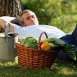 Gardener having a nap — Stock Photo