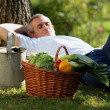 Gardener having a nap - Stock Photo