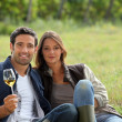 Couple having a glass of wine by a vineyard - Stok fotoğraf
