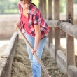 Womcleaning animal enclosure — Stock Photo #18479349