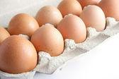 Dozen eggs — Stock Photo