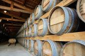 Wine warehouse — Stock Photo