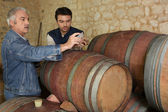 Two men sampling wine in cellar — Stock Photo
