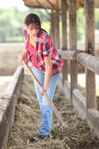 Woman cleaning animal enclosure — Stock Photo