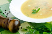 Warm vegetable chowder — Stock Photo