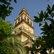 Tower of Sevilla Cathedral - Stock Photo