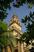 Tower of Sevilla Cathedral — Stock Photo