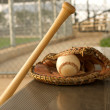Baseball Bat and Glove in the Dugout — Stock Photo #12627646